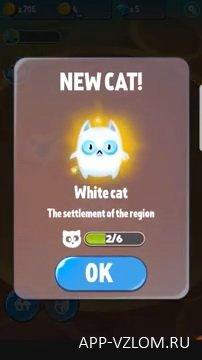 cat evolution взлом